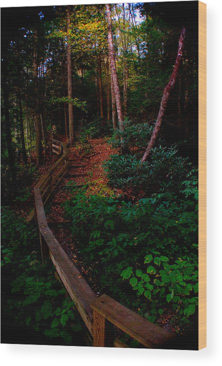 Blue Ridge Mountains Wood Print featuring the photograph Virginia Morning by Jon Emery