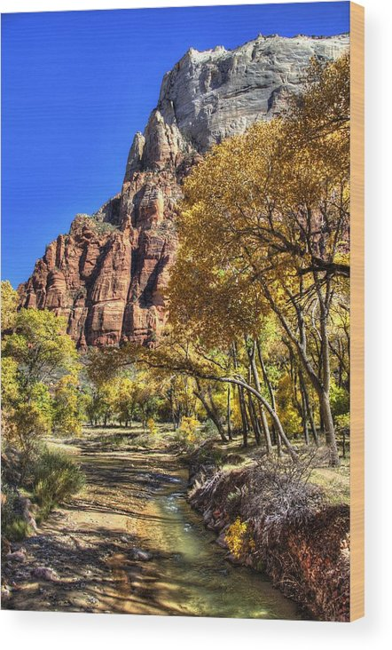 Zion National Park Wood Print featuring the photograph Walk Along The River by Jon Berghoff