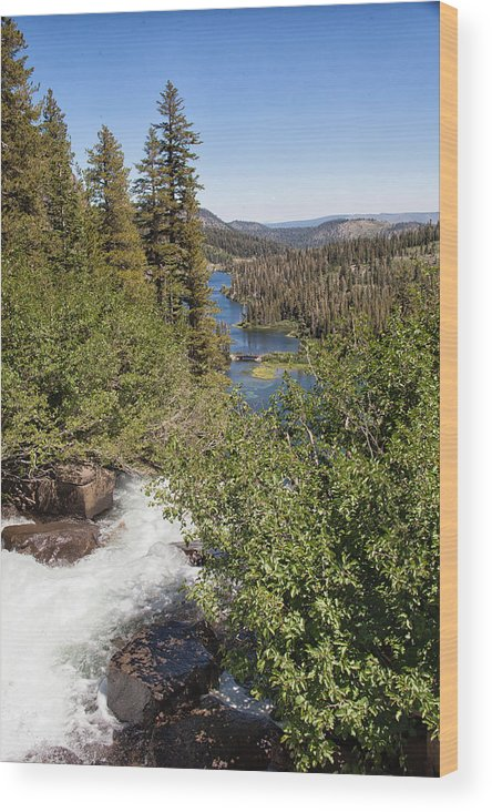 Waterfall Wood Print featuring the photograph Waterfall Outside Lake Mcleod California by Natural Focal Point Photography