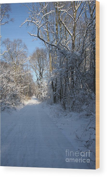 Winter Wood Print featuring the photograph White And Blue by Christiane Schulze Art And Photography
