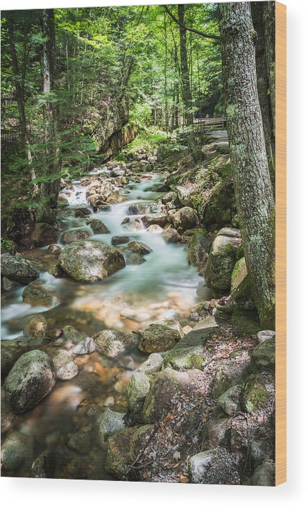 Landscape Wood Print featuring the photograph White Mountains Stream by John Crookes