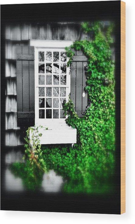 Windows Wood Print featuring the photograph Window by Julia Gatti