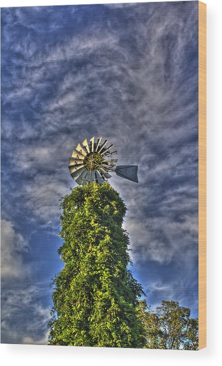 Windmill Wood Print featuring the photograph Winds Of The Mind by David Jones