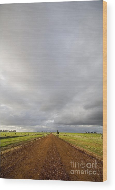 Australia Wood Print featuring the photograph Winter Light On Road by Tim Hester