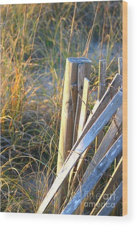 Post Wood Print featuring the photograph Wooden Post And Fence At The Beach by Nadine Rippelmeyer