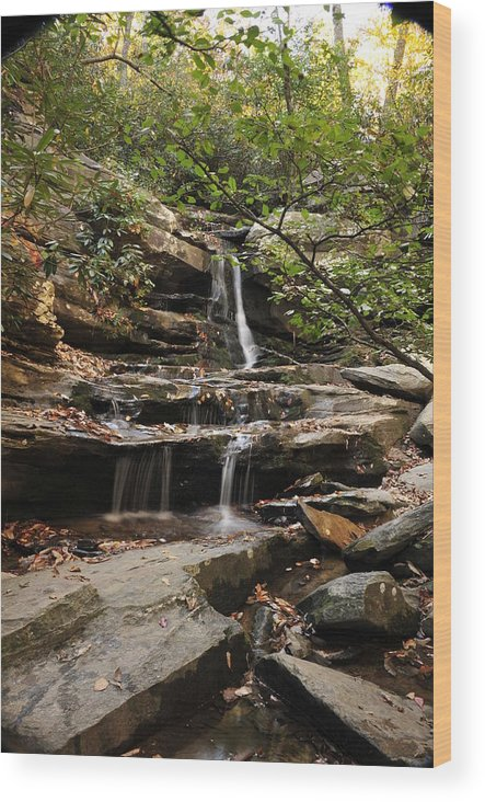 Nature Wood Print featuring the photograph Hidden Falls by Gail Stephenson