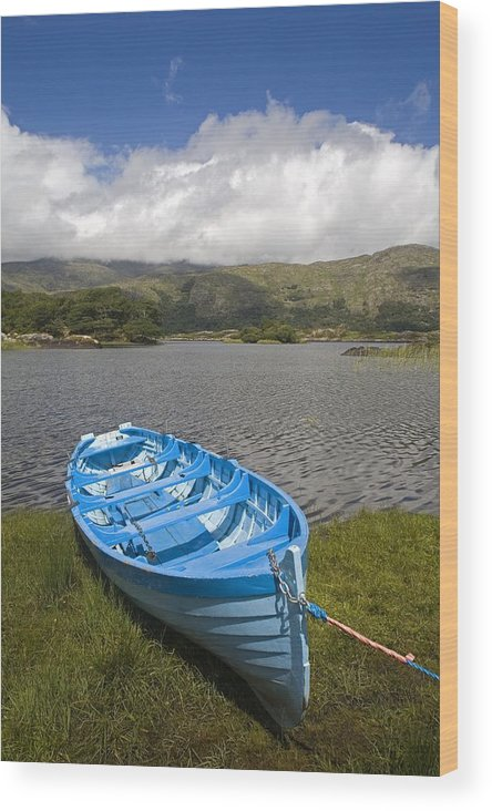 Biosphere Wood Print featuring the photograph Upper Lake, Killarney National Park by Richard Cummins
