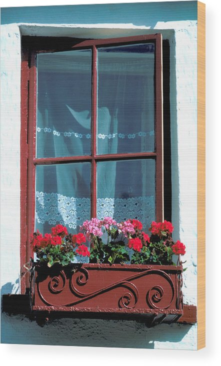 Flower Box Wood Print featuring the photograph A Perfect Window by Carl Purcell