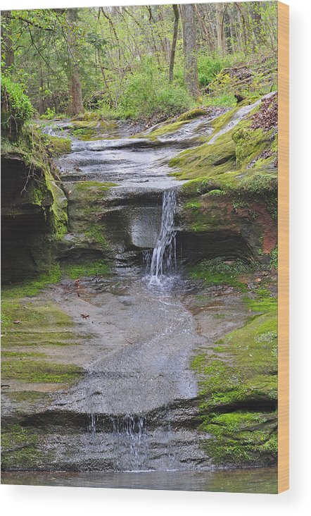 Glenlaurel Wood Print featuring the photograph Camusfearna Gorge 1 by Peter McIntosh