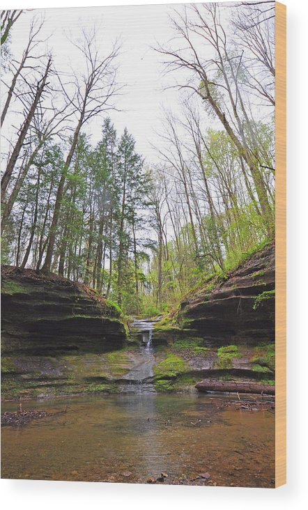 Glenlaurel Wood Print featuring the photograph Camusfearna Gorge 3 by Peter McIntosh