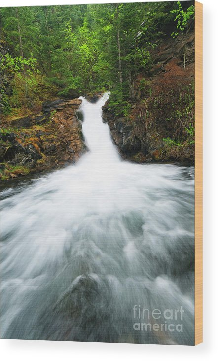 Alberta Wood Print featuring the photograph Canmore Falls by Ginevre Smith