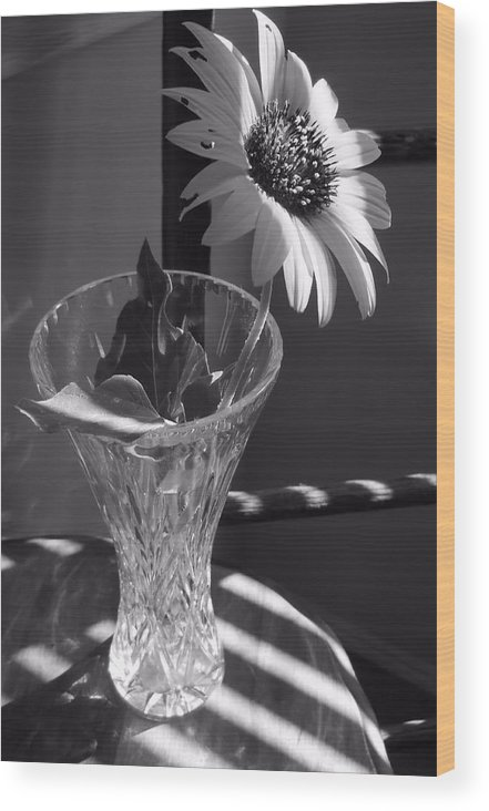 Black And White Wood Print featuring the photograph Crystal Sunflower by Lynnette Johns