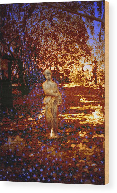 Statue Wood Print featuring the photograph Dream Walker by Nina Fosdick