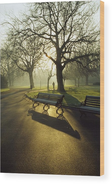 Autumn Wood Print featuring the photograph Dublin - Parks, St. Stephens Green by The Irish Image Collection