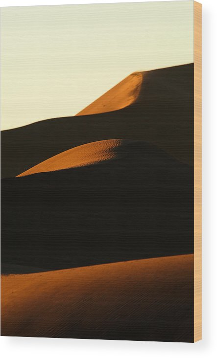 Africa Wood Print featuring the photograph Dune Mood by Alistair Lyne
