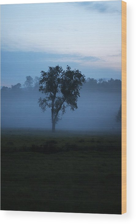 Fog Wood Print featuring the photograph Foggy Morning by Seth Solesbee