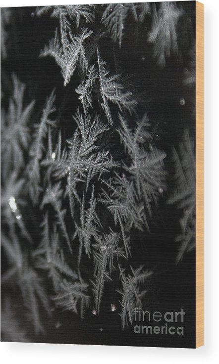 Frost Wood Print featuring the photograph Frost On Glass by Shirleen Mitchell