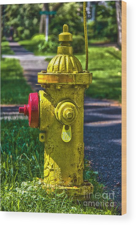 Fire Hydrant Wood Print featuring the photograph Hdr Fire Hydrant by Mathew Warren