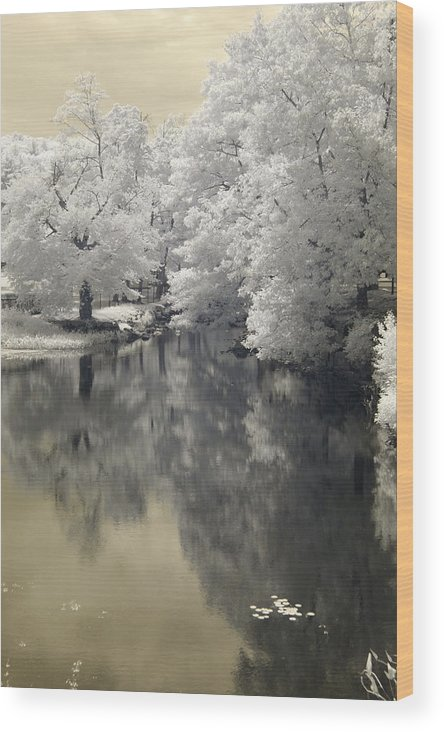River Stafford Trees Water Reflections Infrared Landscape Wood Print featuring the digital art Middle River In Infrared by Dorothy Drobney