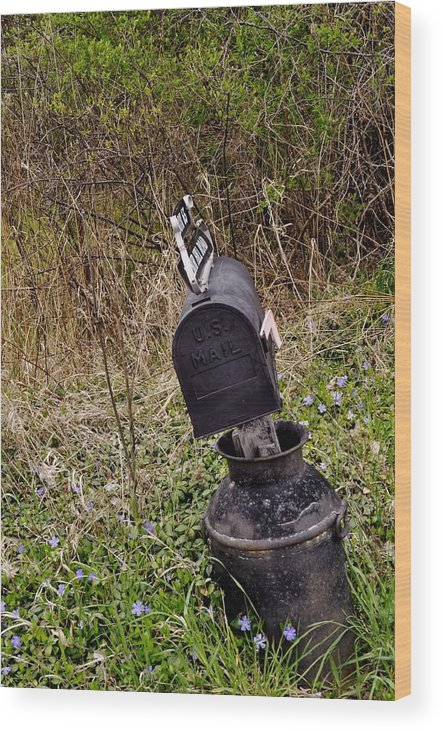 Mailbox Wood Print featuring the photograph Milkcan Mailbox by Mary Frances