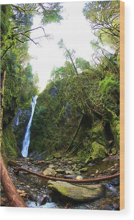 Waterfalls Wood Print featuring the photograph Niagara Falls At Goldstream by Erica Rieger