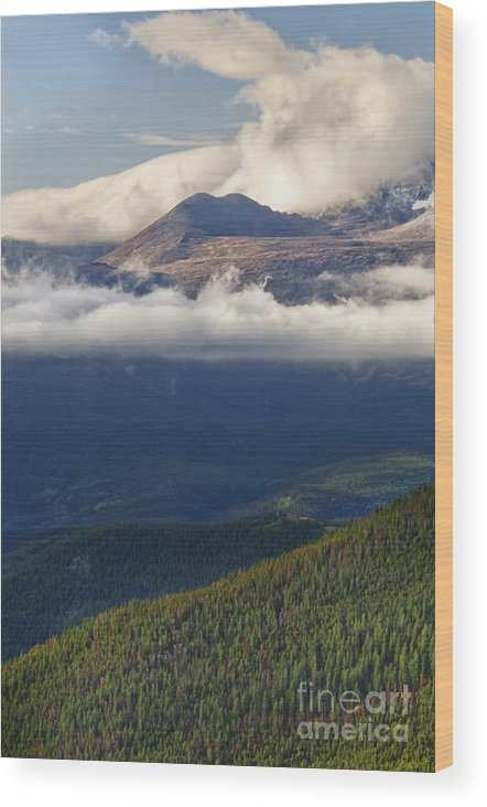 Rocky Mountain National Park Wood Print featuring the photograph Rocky Mountain National Park Colorado by Andre Babiak