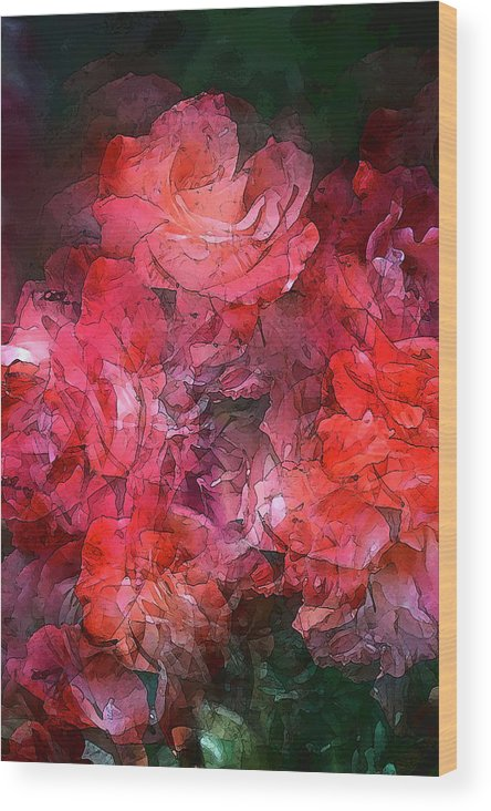 Floral Wood Print featuring the photograph Rose 148 by Pamela Cooper