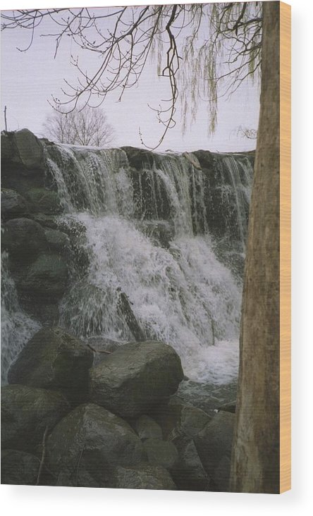 Landscape Wood Print featuring the photograph Spring Falls by Annella Grayce