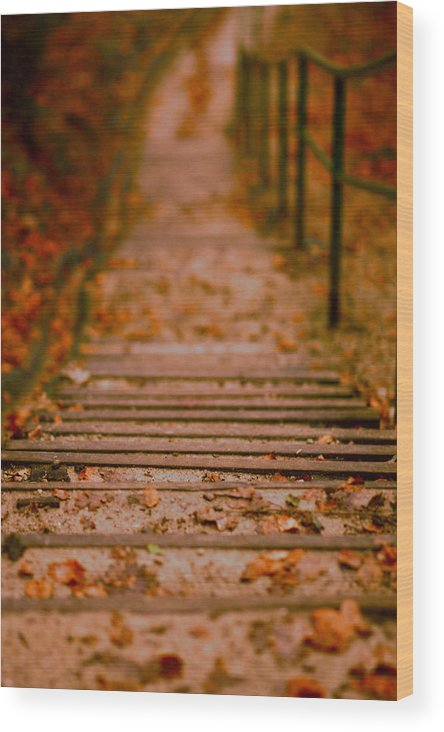 Stairs Wood Print featuring the photograph Stairs by Vail Joy