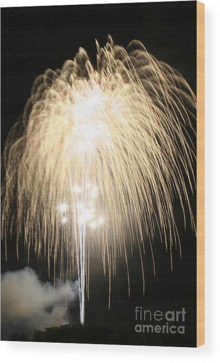 Fireworks Wood Print featuring the photograph Summers Night Blast by Patricia Molison