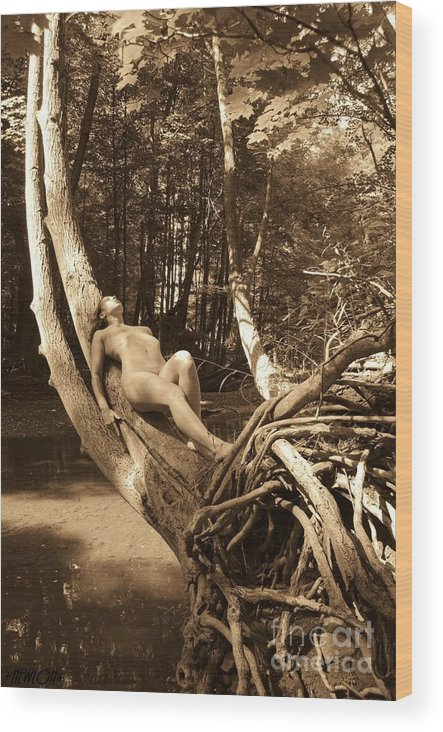 Nude Wood Print featuring the photograph The Silent Place 2 by J N