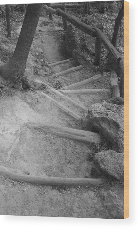 Trail Steps At Hamilton Pool Texas Wood Print featuring the photograph Trail Steps by Greg Kopriva