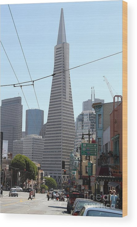 San Francisco Wood Print featuring the photograph Transamerica Pyramid Through North Beach San Francisco . 7d7445 by Wingsdomain Art and Photography