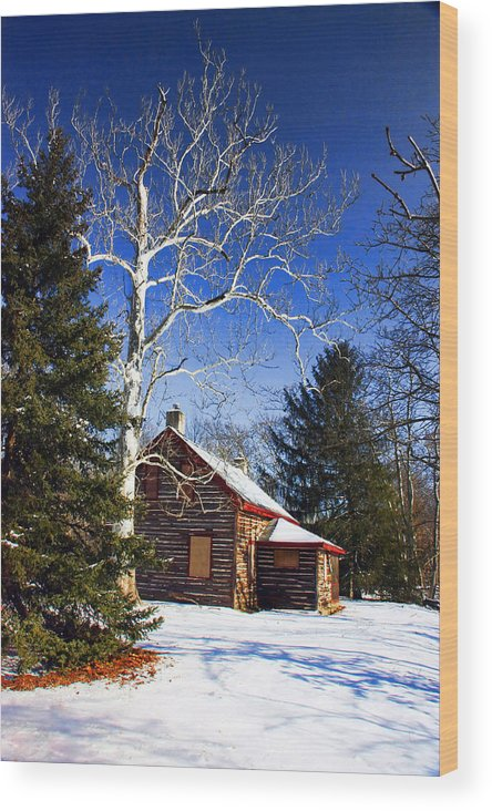 Cabin Wood Print featuring the photograph Cabin In The Woods by Bonnie Rovere