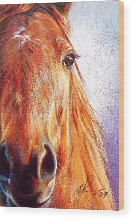 Horse Animal Art Equine Drawing Portrait Wood Print featuring the drawing Chestnut by Elena Kolotusha