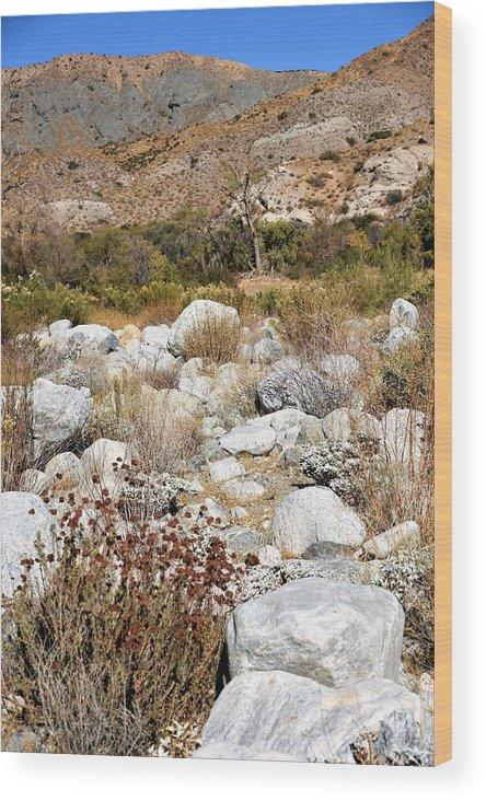 Desert Landscape Wood Print featuring the photograph Desert Landscape by Lisa Dunn