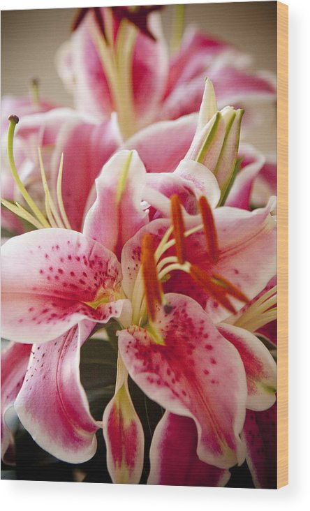 Flora Wood Print featuring the photograph Graceful Lily Series 15 by Olga Smith