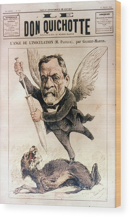 1886 Wood Print featuring the photograph Louis Pasteur (1822-1895) by Granger