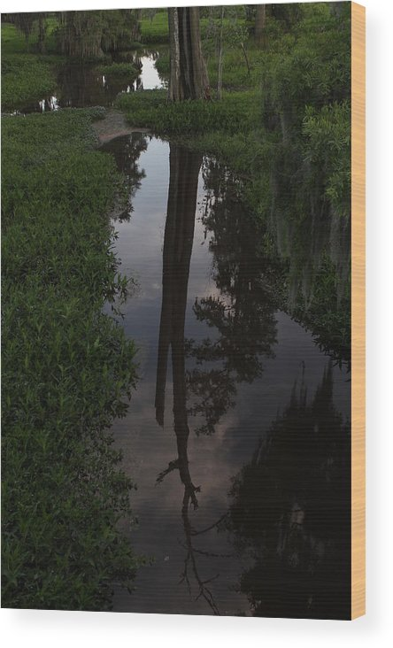 Water Wood Print featuring the photograph Reflection by Walt Reece