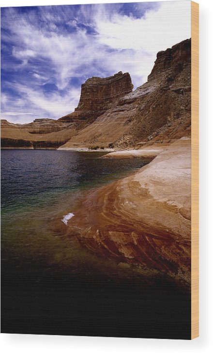 Photography Wood Print featuring the photograph Sandstone Shoreline And Cliffs Lake Powell by Tom Fant