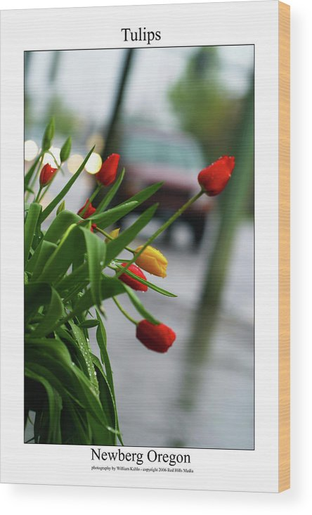 Portland Photographs Wood Print featuring the photograph Tulips by William Jones
