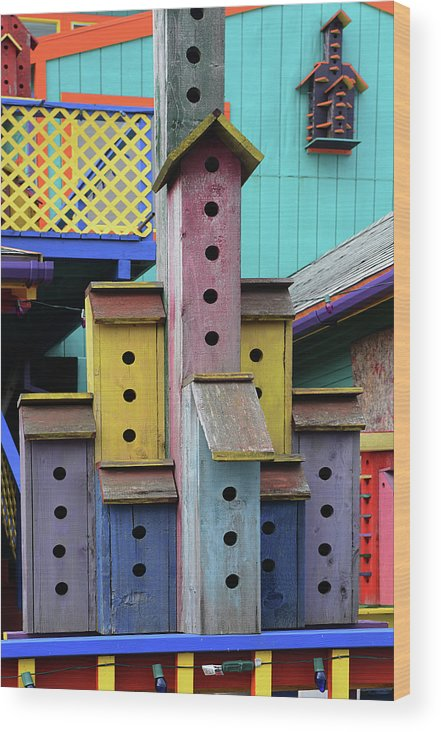 Birdhouse Wood Print featuring the photograph Birdhouses For Colorful Birds 3 by Bob Christopher