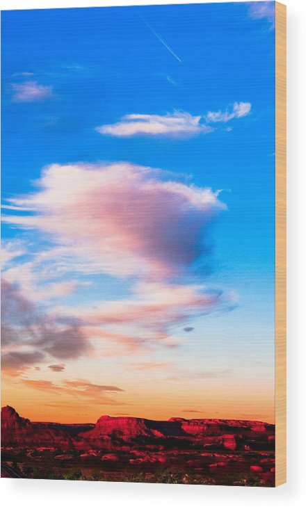 Landscape Wood Print featuring the photograph Canyonland N.p. by Larry Gohl