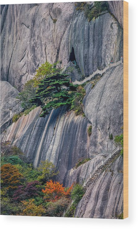 Anhui Province Wood Print featuring the photograph 5786- Yellow Mountains by David Lange