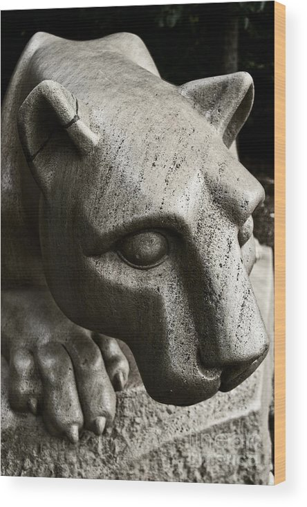Sculpture Wood Print featuring the photograph A Nittany Lion by Tom Gari Gallery-Three-Photography