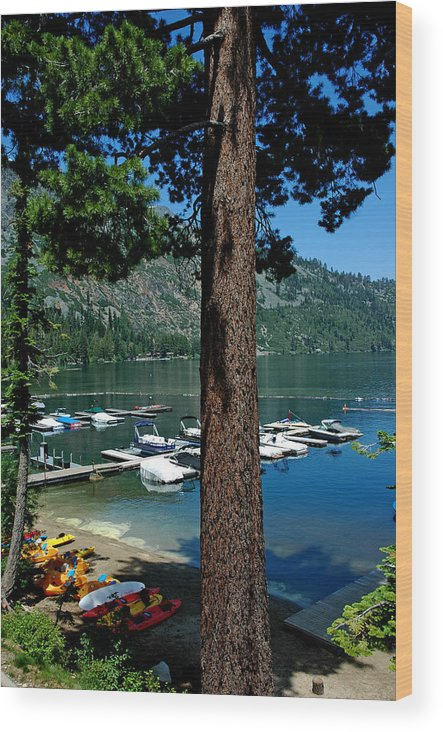 Usa Wood Print featuring the photograph A Trees View Of Fallen Leaf Lake by LeeAnn McLaneGoetz McLaneGoetzStudioLLCcom