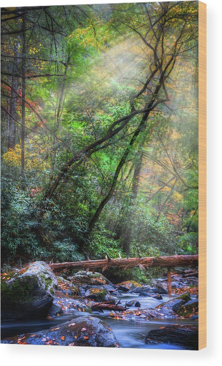 Appalachia Wood Print featuring the photograph Angels At The River by Debra and Dave Vanderlaan