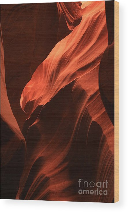 Antelope Canyons Wood Print featuring the photograph Antelope Canyon by Timothy Johnson
