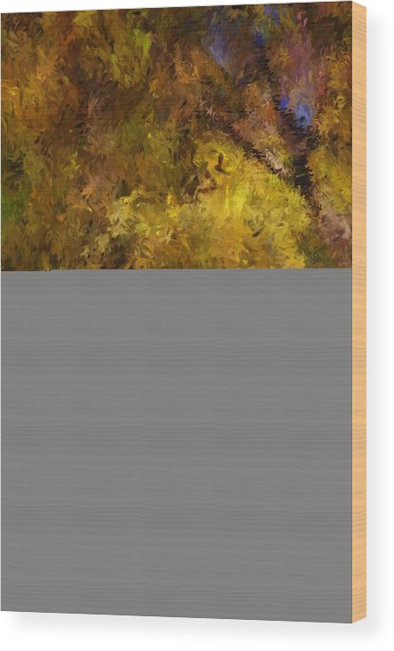 Abstract Digital Painting Wood Print featuring the digital art Autumn Abstract by David Lane