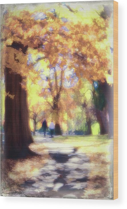 Autumn Wood Print featuring the photograph Autumn In The Park by Jeannine Walker